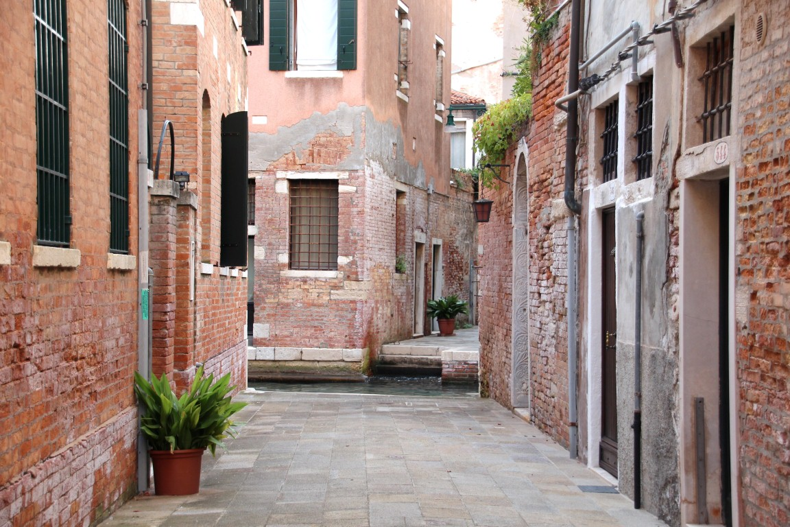 Venedig - design and BLOOM