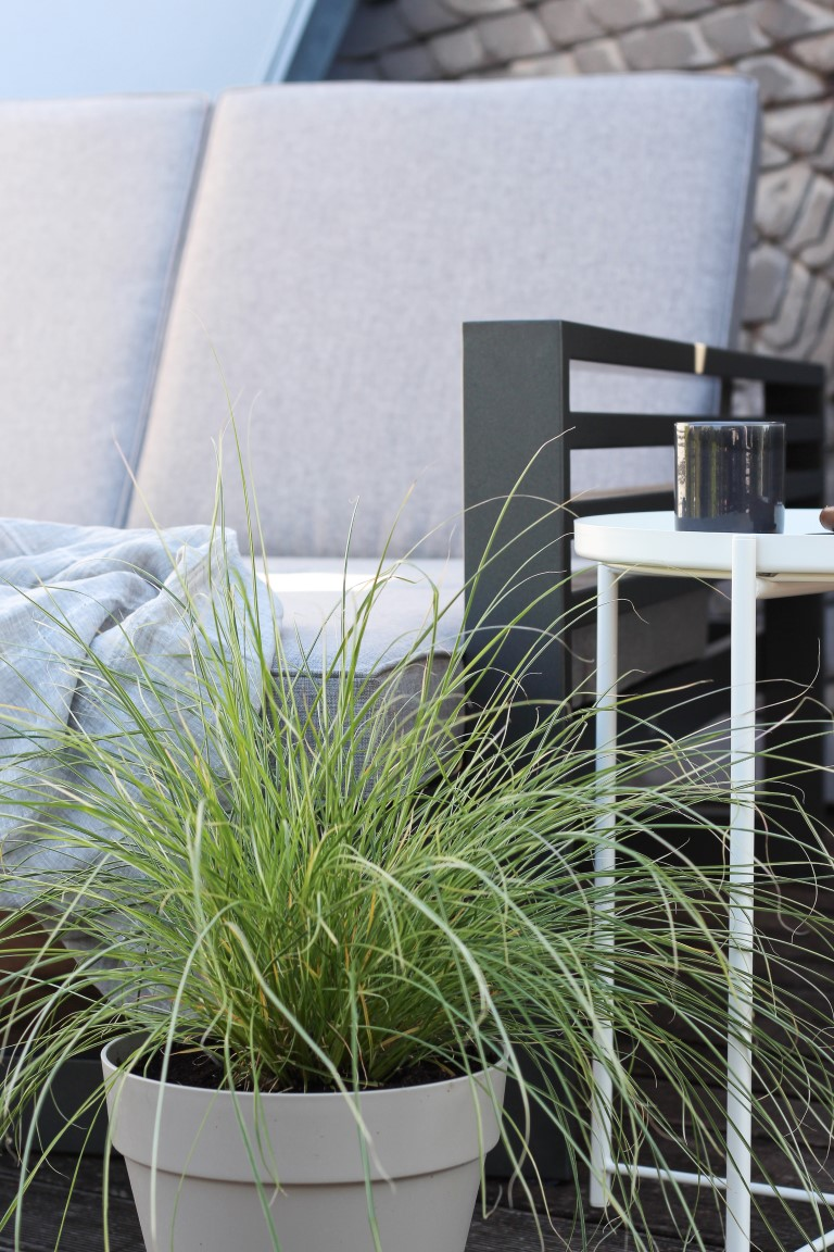 design and BLOOM - Slow Summer - Dachterrasse